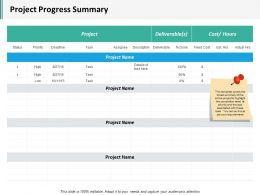 Project Progress Summary Ppt Inspiration Summary