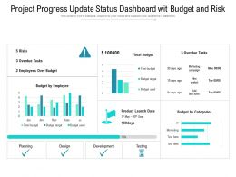 Project Progress Update Status Dashboard Wit Budget And Risk