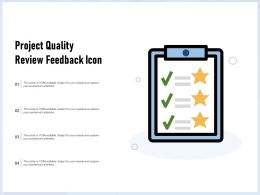 Project Quality Review Feedback Icon