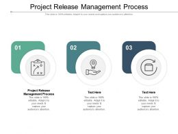 Project Release Management Process Ppt Powerpoint Infographics Pictures Cpb