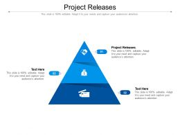 Project Releases Ppt Powerpoint Presentation Slides Icons Cpb
