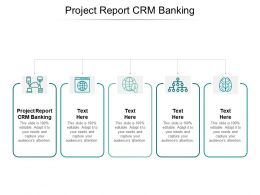 Project Report CRM Banking Ppt Powerpoint Presentation Slides Inspiration Cpb