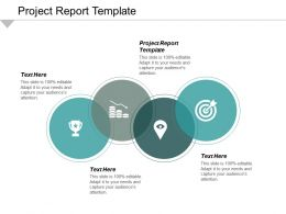 Project Report Template Ppt Powerpoint Presentation File Design Ideas Cpb