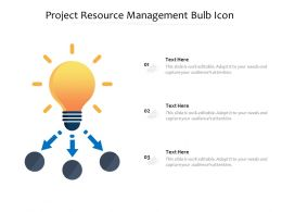 Project Resource Management Bulb Icon