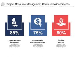 Project Resource Management Communication Process Management Flexible Structure Cpb