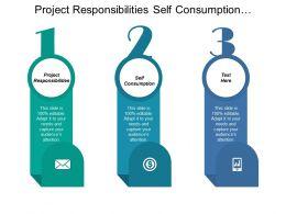 Project Responsibilities Self Consumption Department Responsibilities Steering Committee