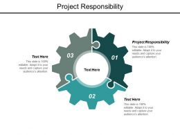 Project Responsibility Ppt Powerpoint Presentation Outline Example Topics Cpb