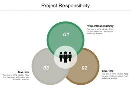 Project Responsibility Ppt Powerpoint Presentation Slides Outline Cpb
