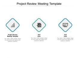 Project Review Meeting Template Ppt Powerpoint Presentation Layouts Tips Cpb