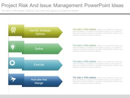 Project Risk And Issue Management Powerpoint Ideas