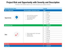 Project Risk And Opportunity With Severity And Description