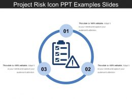 Project Risk Icon Ppt Examples Slides