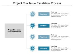 Project Risk Issue Escalation Process Ppt Powerpoint Presentation Show File Formats Cpb
