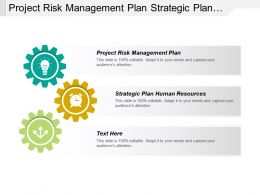 Project Risk Management Plan Strategic Plan Human Resources Cpb