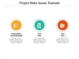 Project Risks Issues Example Ppt Powerpoint Presentation Background Image Cpb