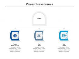 Project Risks Issues Ppt Powerpoint Presentation Infographics Good Cpb