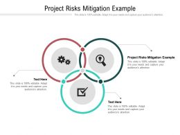 Project Risks Mitigation Example Ppt Powerpoint Presentation Professional Slideshow Cpb