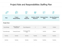 Project Role And Responsibilities Staffing Plan