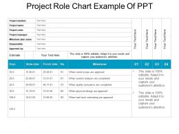 Project Role Chart Example Of Ppt