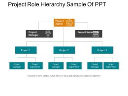 Project Role Hierarchy Sample Of Ppt