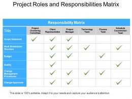 Project Roles And Responsibilities Matrix Powerpoint Guide