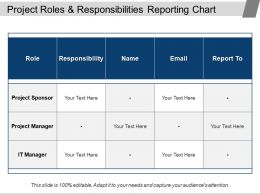 Project Roles And Responsibilities Reporting Chart