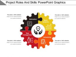 Project Roles And Skills Powerpoint Graphics