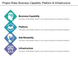 Project Roles Business Capability Platform And Infrastructure