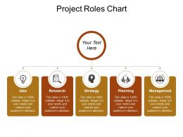 Project Roles Chart Sample Of Ppt Presentation