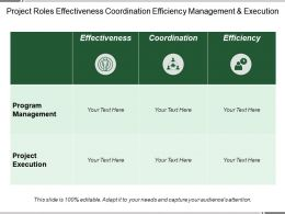 Project Roles Effectiveness Coordination Efficiency Management And Execution
