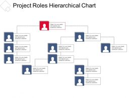 Project Roles Hierarchical Chart Presentation Portfolio