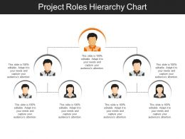 project_roles_hierarchy_chart_sample_of_ppt_presentation_Slide01