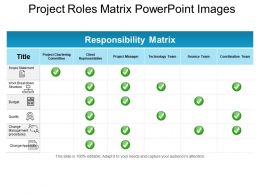 project_roles_matrix_powerpoint_images_Slide01