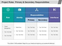 Project Roles Primary And Secondary Responsibilities