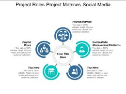 Project Roles Project Matrices Social Media Measurement Platforms Cpb