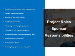 Project Roles Sponsor Responsibilities Powerpoint Presentation
