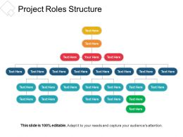 Project Roles Structure Sample Ppt Files