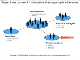 Project Roles Updates And Collaborations Planning Analysis And Decisions