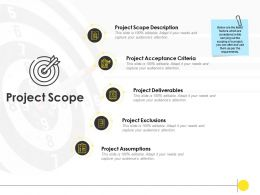 Project Scope Description Acceptance Ppt Powerpoint Presentation Infographic