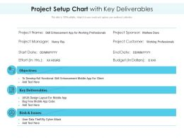Project Setup Chart With Key Deliverables