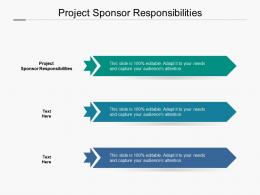Project Sponsor Responsibilities Ppt Powerpoint Presentation File Examples Cpb