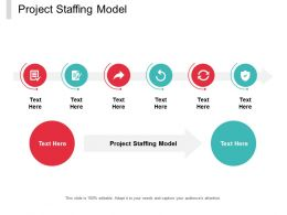 Project Staffing Model Ppt Powerpoint Presentation File Tips Cpb