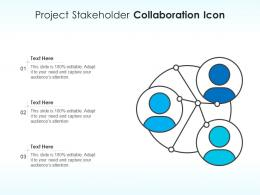 Project Stakeholder Collaboration Icon
