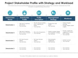 Project Stakeholder Profile With Strategy And Workload