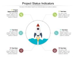 Project Status Indicators Ppt Powerpoint Presentation Ideas Cpb