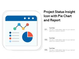 Project Status Insight Icon With Pie Chart And Report