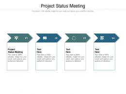 Project Status Meeting Ppt Powerpoint Presentation Professional Design Templates Cpb