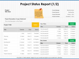 Project Status Report Development Ppt Powerpoint Presentation Icon Show