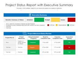 Project Status Report With Executive Summary