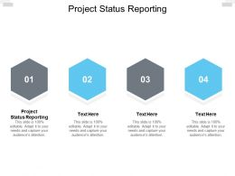 Project Status Reporting Ppt Powerpoint Presentation Ideas Images Cpb